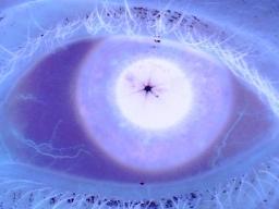 eye225.jpg
