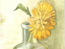 flower235.jpg