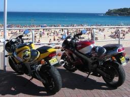 bikes319.jpg