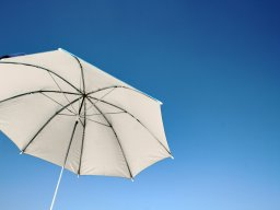 Mark_Miller_umbrella486.jpg