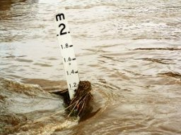 Warwick_Kay_flood474.jpg