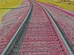eric_bernard_tracks597.jpg