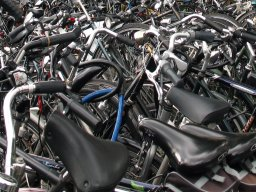Lisa_Nouwen_bikes.754jpg