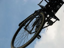 Sara_Medved_bicycle789.jpg