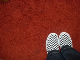 Yvette2_carpet775.jpg