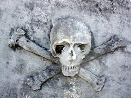 alfonso_romero_skull