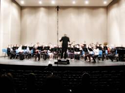 photojynic_orchestra