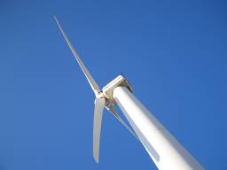 simon_gray_windfarm